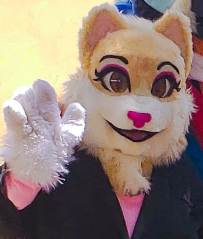 Cat furries and other animal furries are fighting with the police on the NPA Twitter feed