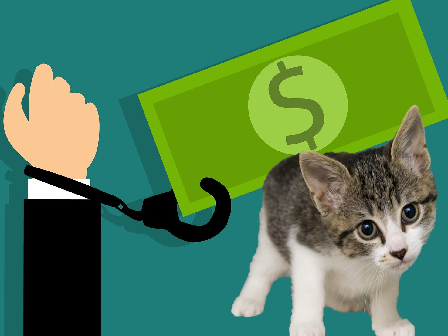 Debt can no longer be enforced by officials by using a companion animal as leverage in Russia