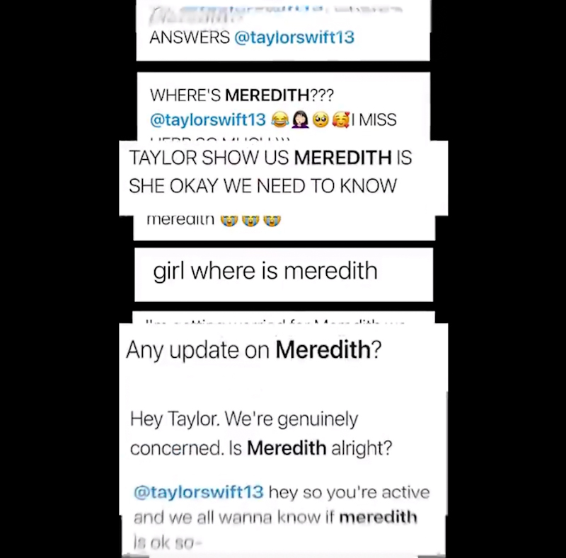 Fans ask what has happened to Taylor Swift's cat Meredith