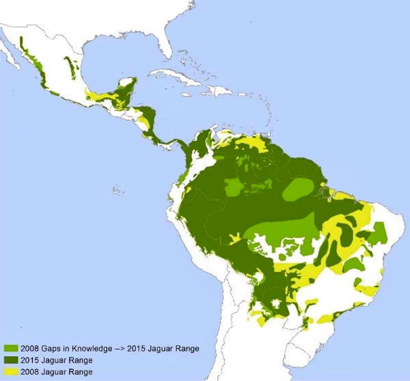 Alternative jaguar distribution from IUCN Red List