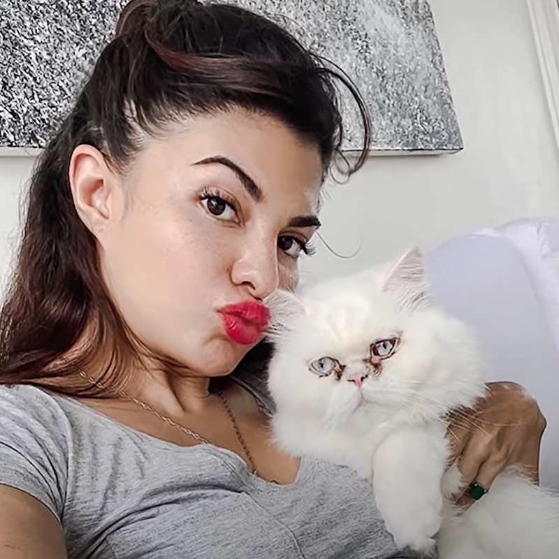 Jacqueline Fernandez with her white flat-faced Persian with tear duct overflow causing staining