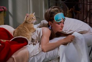 "Orangey as ""Cat"" in Breakfast at Tiffany's with Audrey Hepburn"