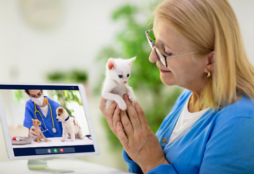 Remote triage by a veterinarian in more efficient