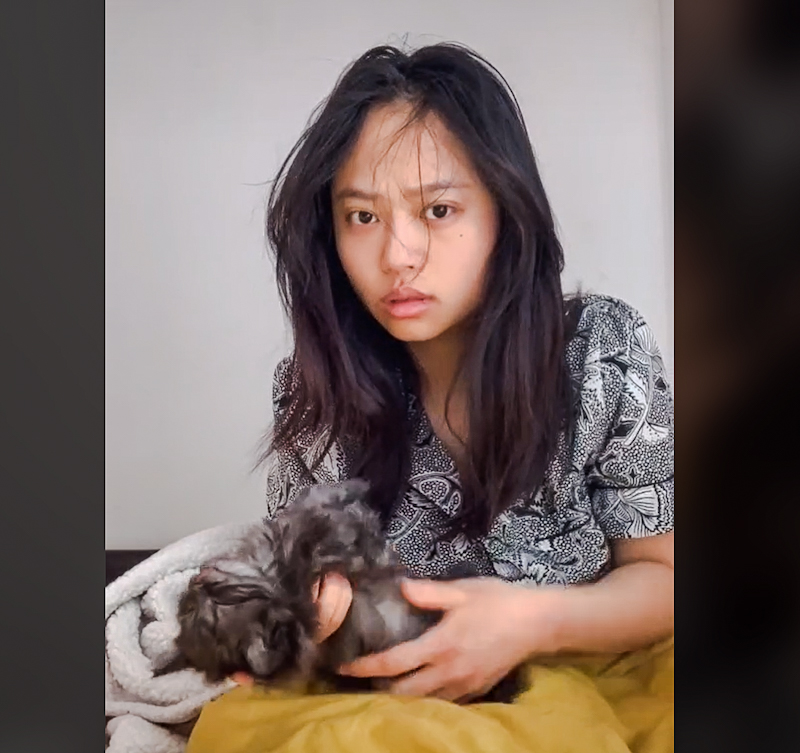 Woman is concerned that her kitten has suddenly died