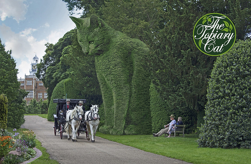 Rich Saunders 'The Topiary Cat at Hatfield House'