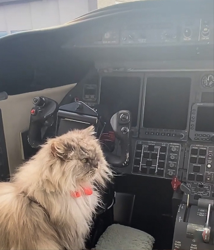 Clive prepares to fly the private jet