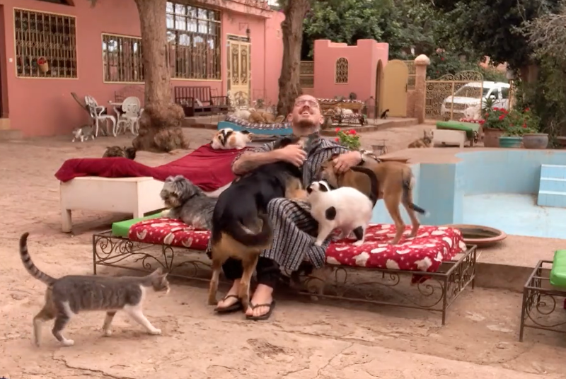 Guy is loved by cats and dogs at rescue center