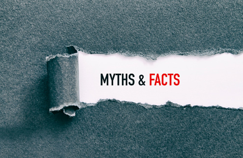 Myths and facts regarding the cat