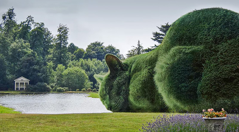 Rich Saunders' The Topiary Cat, the first digital photograph, as I understand it, based on his Russian Blue Tolley sleeping