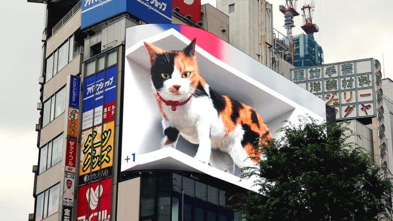 CAT-ZILLA