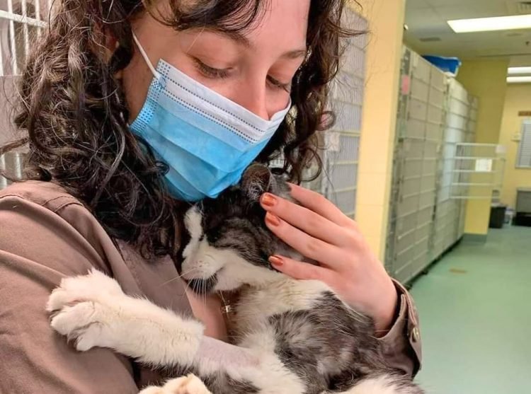 This woman adopted this 20-year-old cat from a shelter because she didn't want him to spend the end of his life alone in a cage