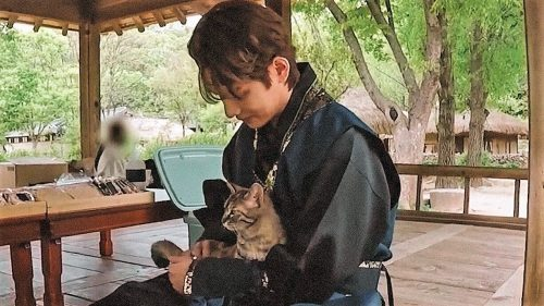 Kim Tae-hyung and stray or inside/outside cat