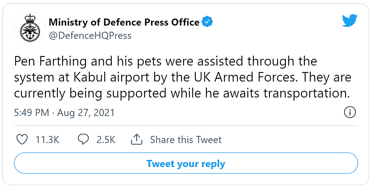 MOD tweets that Mr Farthing and his animals are getting out.