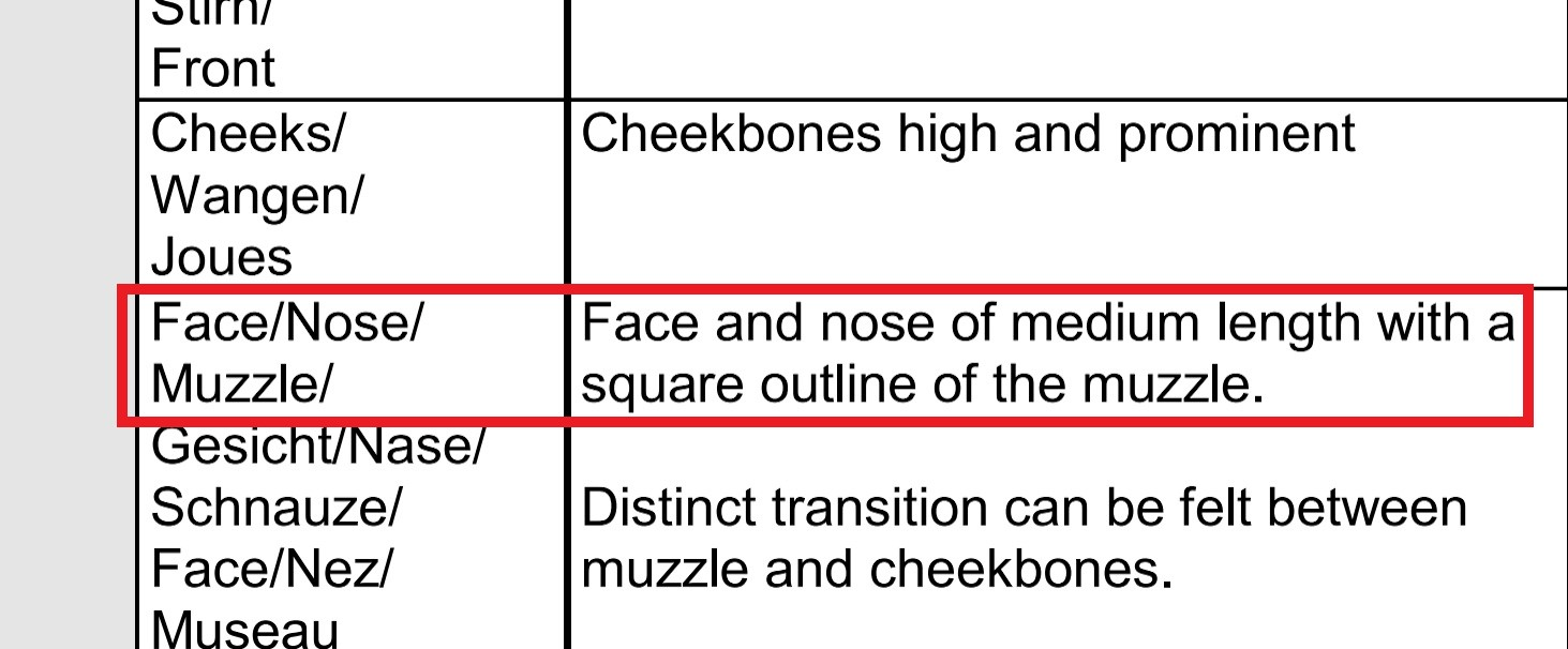Muzzle FiFE