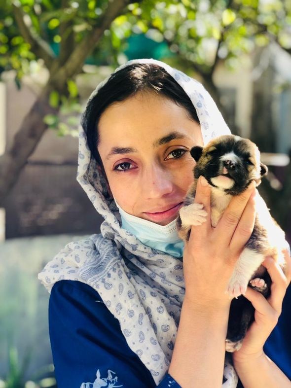 Dr Hamida is one of 24 Afghan nationals working at Nowzad's centre in Kabul