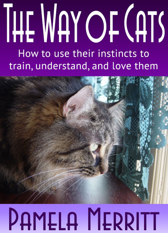 The Way Of Cats