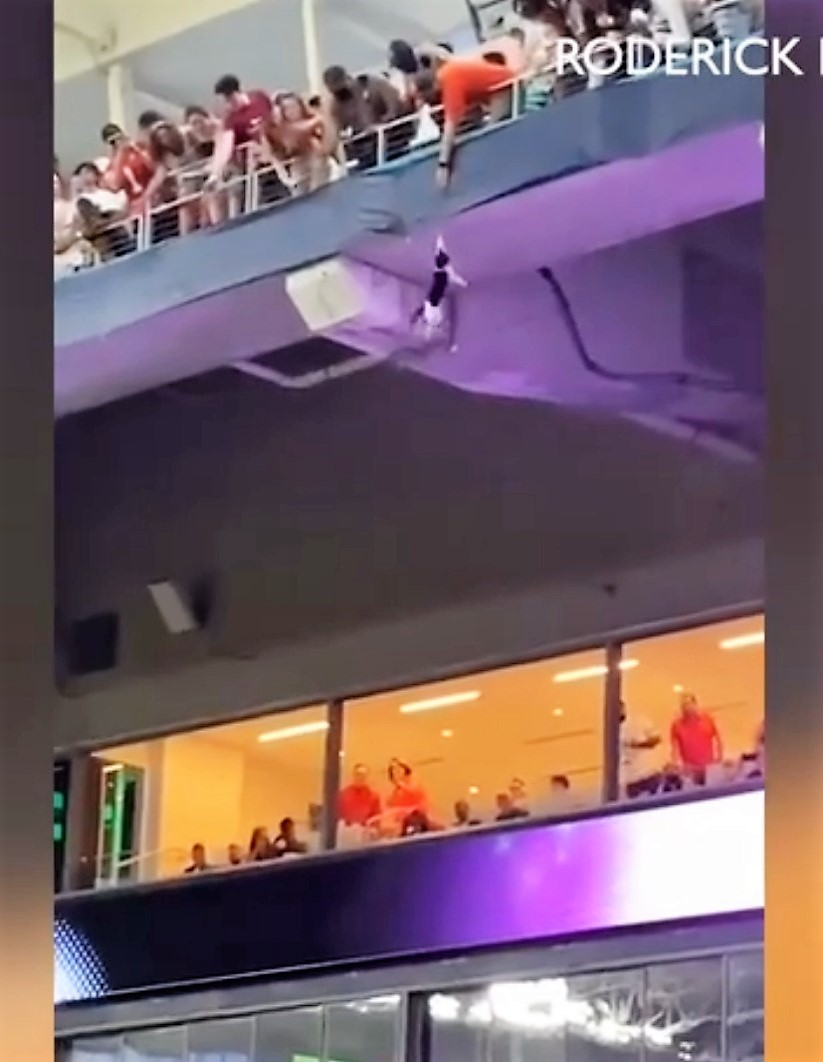 Cat falls in college stadium but survives as two students break her fall with the American flag