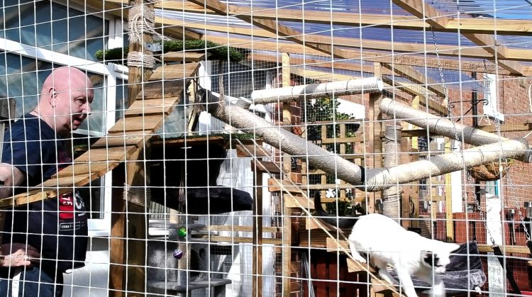 Catio built without planning permission has to be demolished