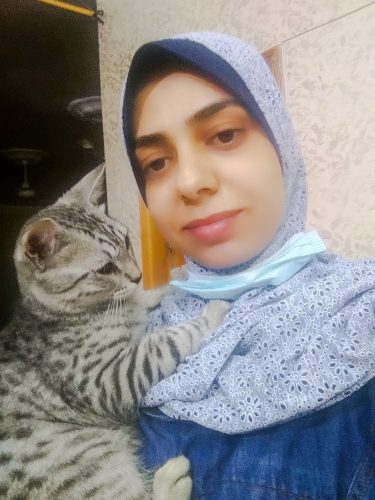 Gaza cat lady grieves over her missing silver tabby rescued cat