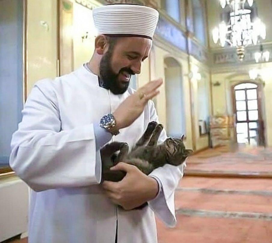 Imam Mustafa Efe with a kitten inside his mosque: Aziz Mahmud Hüdayi Mosque, Istanbul