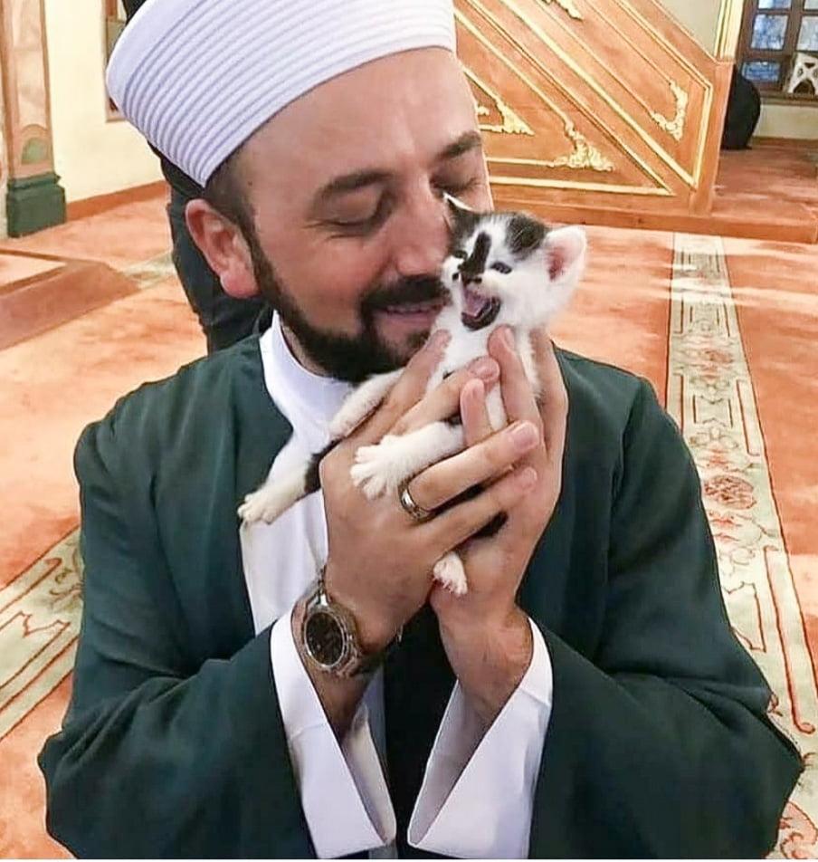 Imam Mustafa Efe with a kitten inside his mosque: Aziz Mahmud Hüdayi Mosque, Istabbul