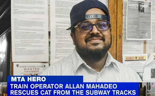 MTA hero, Allan Mahadeo, train driver, rescues black cat on lines
