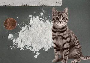 Meow Meow drug