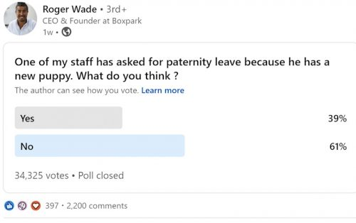 Pawternity leave poll by Roger Wade