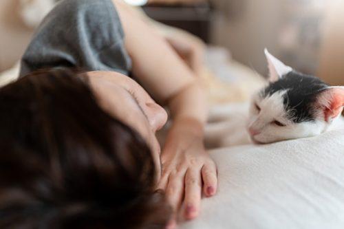 Woman-cat relationship