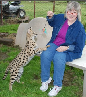Tame Serval cat and Helmi Flick