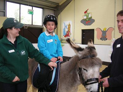 Animal assisted therapy, Ireland. Photo by Donkey Sanctuary Press Images