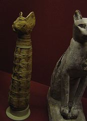 egyptian cats11