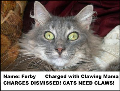 Guilty but safe from declawing