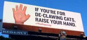 hands up declawing poster