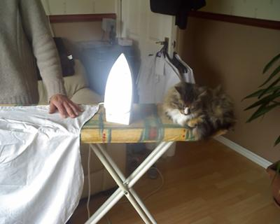 Helping with the ironing