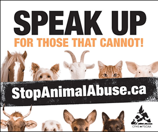 Stop Animal Abuse Canada